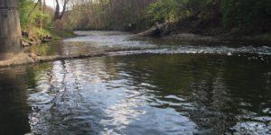 Montour Run Trout Fishing 4/26/16